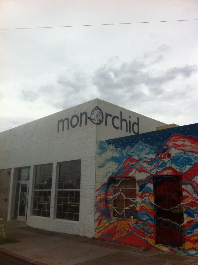 Monorchid