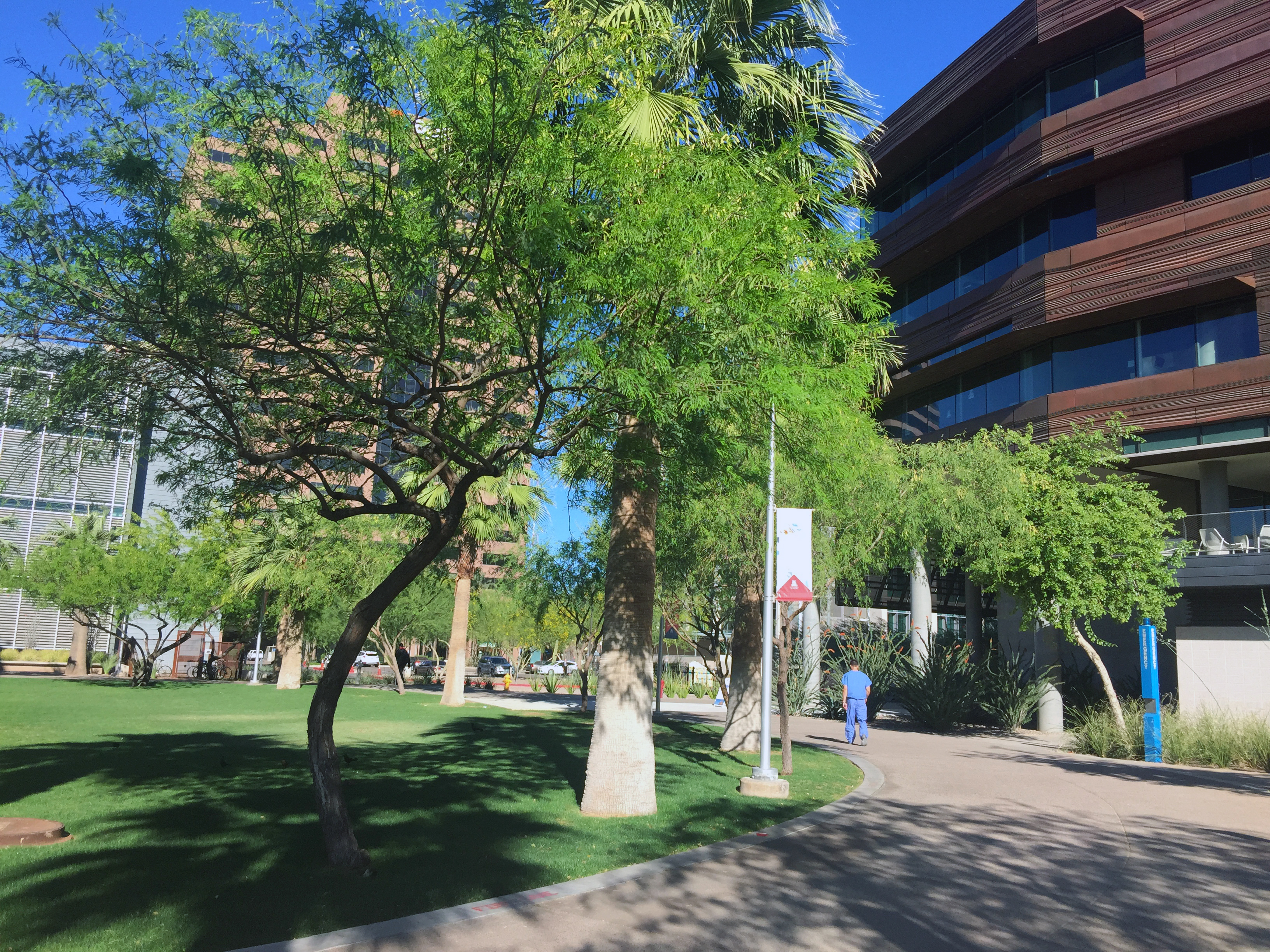 Nau Expands Student Population On Phoenix Biomedical -4936