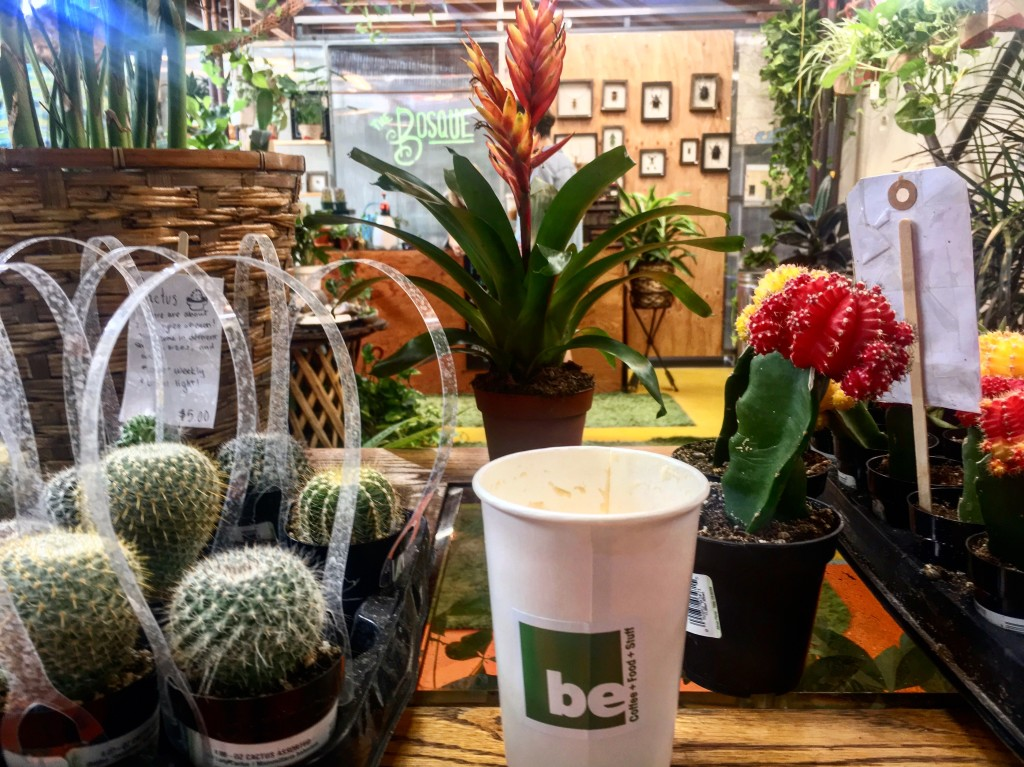 Enjoy your morning coffee by taking a stroll through The Bosque to check out their air plants, fly catchers, and other cute succulents. (Photo: Leah Goldberg)